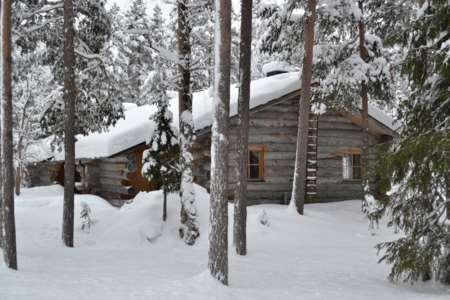 Pyhä Log Cabins - (3 star cabins)