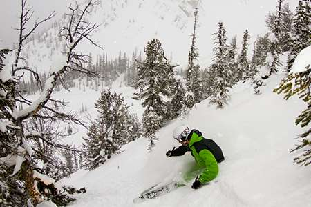 Ski holidays in Kicking Horse