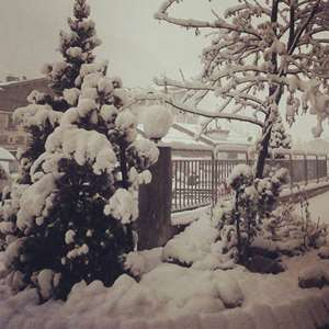 Snow Report | 09 Nov 2014: Top 5 Photos from this Week