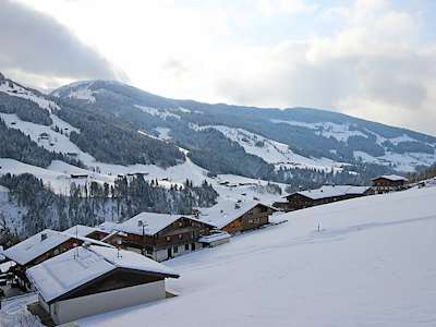 Landhaus Alpbach (AT6236.150.1) Picture