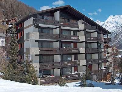 Amici (CH3906.430.8) Picture
