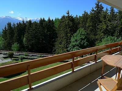 Terrasse des Alpes (CH3962.760.13) Picture
