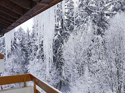 Terrasse des Alpes (CH3962.760.3) Picture
