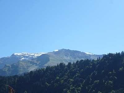 Sunnmatt Süd 233 Picture