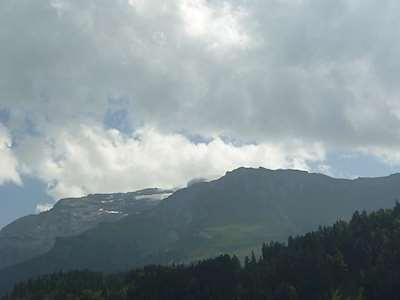 Steinacher Picture