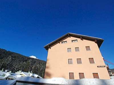 Ciclamino Picture