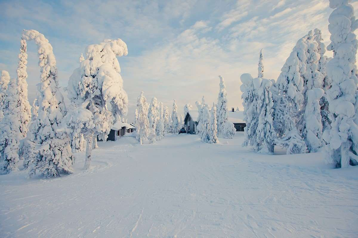 Ski holidays in Iso-syote in Finland