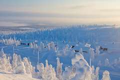 Ski holidays in Lapland